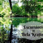 50 sfumature di verde in Bela Krajina