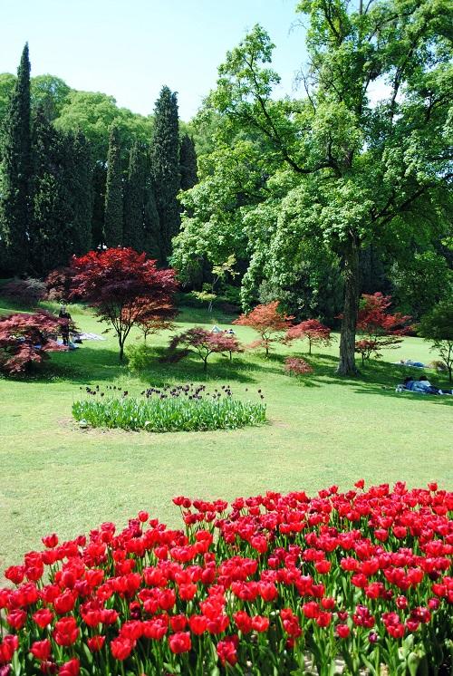parco giardino sigurtà tulipani primavera