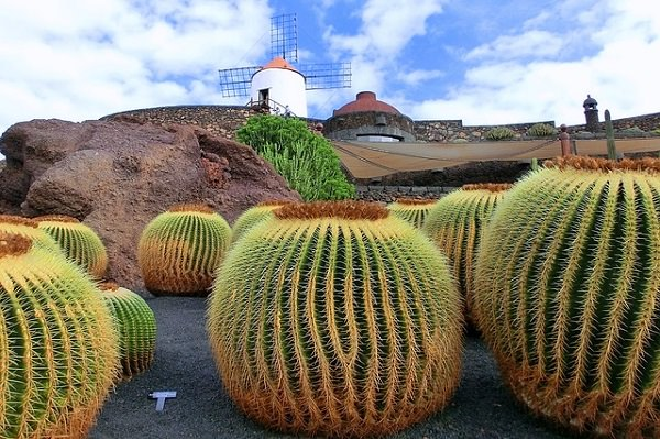 vacanze isole canarie