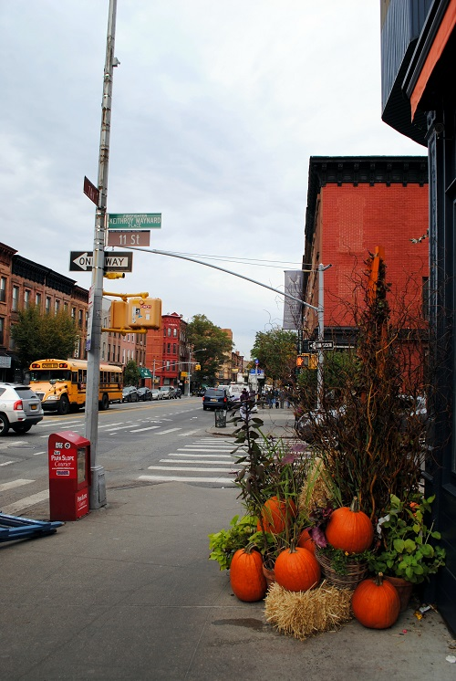 fall foliage autunno new york brooklyn (1)