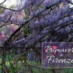 Firenze e la primavera: i giardini in fiore da visitare